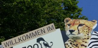 Offener Brief, Zoo Neuwied