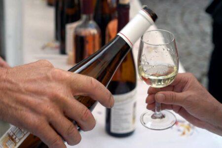 Öffentliche Weinproben im August und September