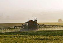 Naturschützer: Verbot von Pestiziden in Schutzgebieten überfällig