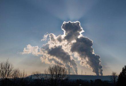 Weniger Treibhausgase aus der Landwirtschaft